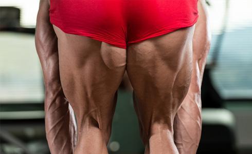 單車時代 - 徒手重量訓練動作(進階)—腿部