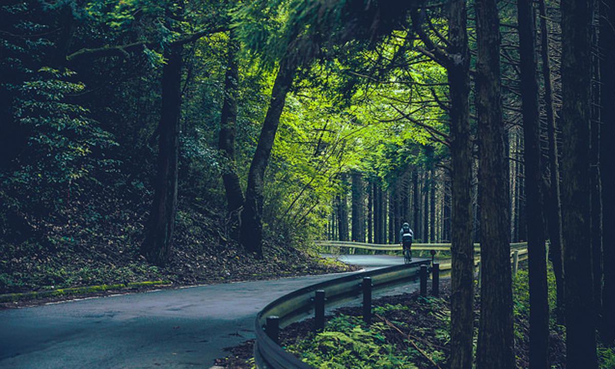 【安森旅行日記】騎行日本關東—翻過熱海地區的十國峠山路