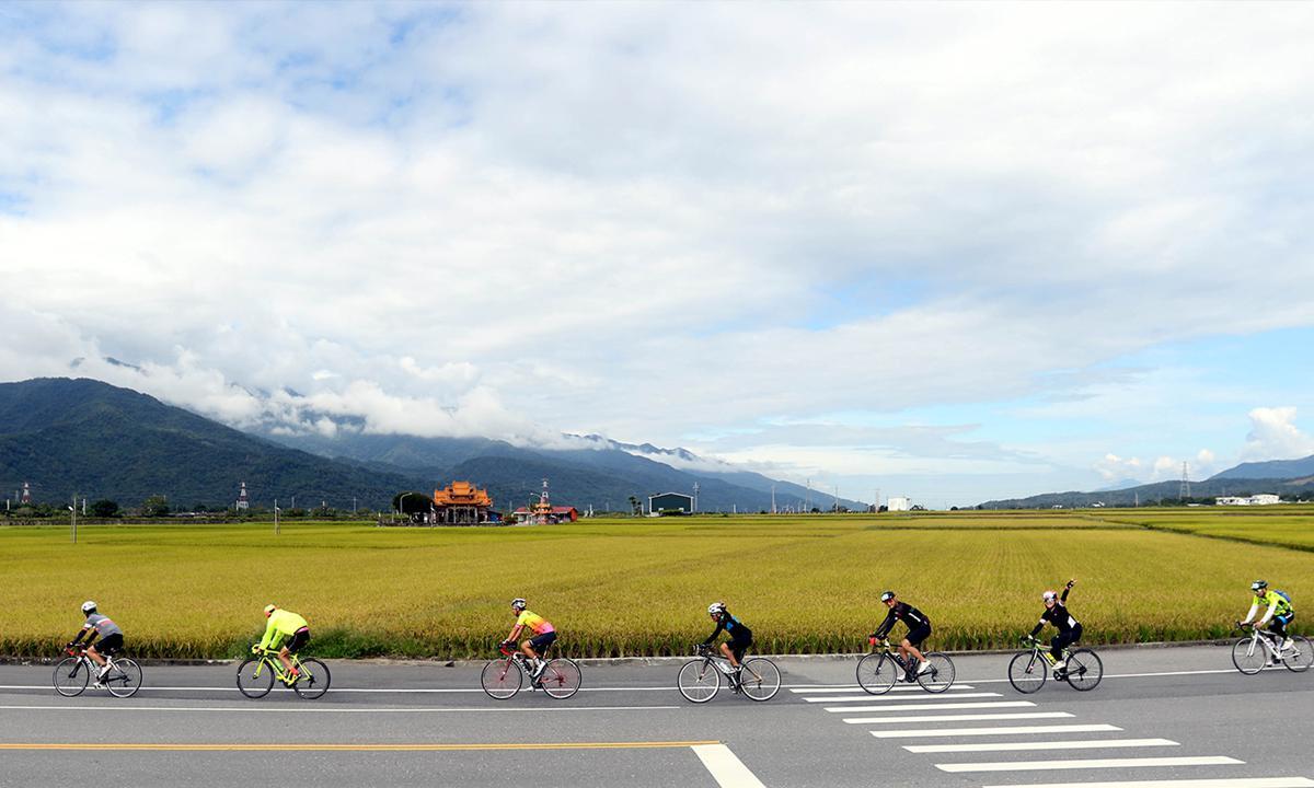 敞徉於縱谷稻黃香 花東海灣盃自行車挑戰賽