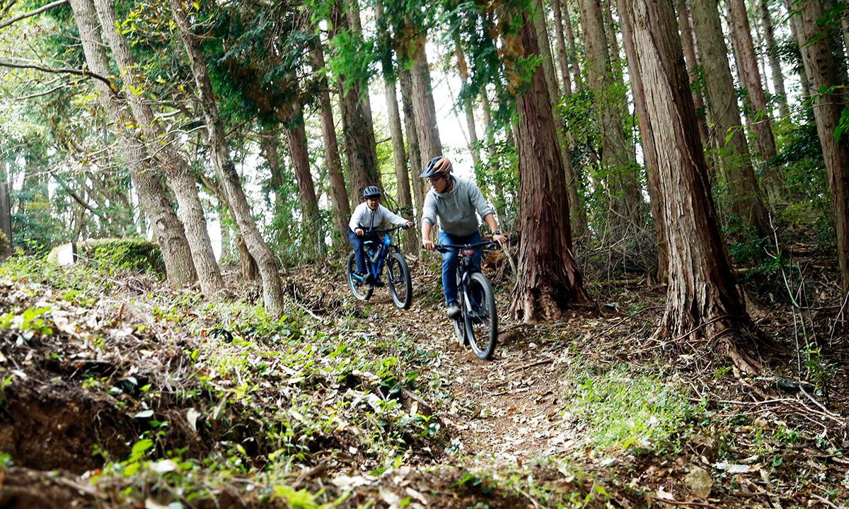 YAMABUSHI TRAIL TOUR 內行的西伊豆登山車體驗